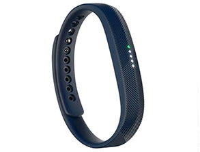 Fitbit Flex 2 Everyday Fitness Tracker Wristband
