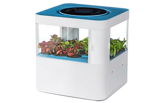 Tech Forest Aromatic Air Cleaner