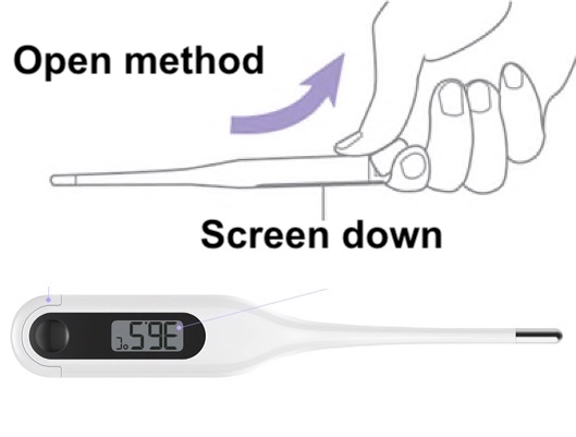 Xiaomi Thermometer