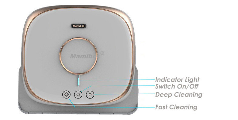 Best Dry and Wet Mopping Robot