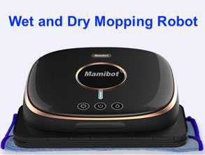 Smart GPS Planning Dry and Wet Mopping Robot