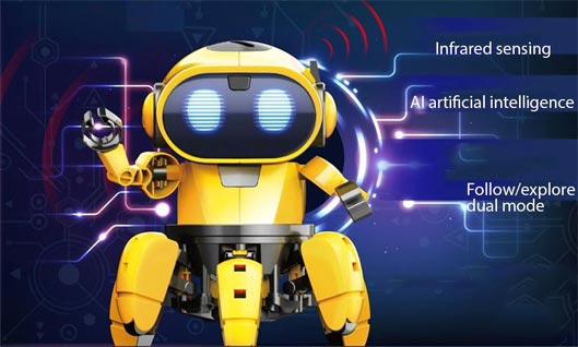 Educational DIY AI Smart Robot