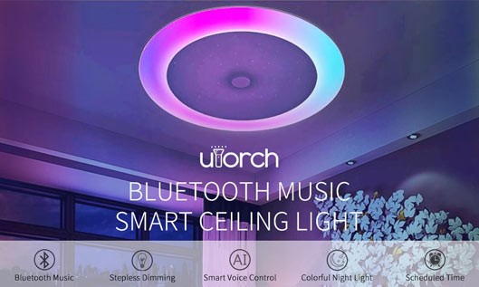 Music Smart Voice Control Ceiling Light