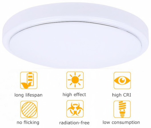 Remote Control LED Round Ceiling Light