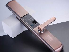 Password and Fingerprint Lock for Home