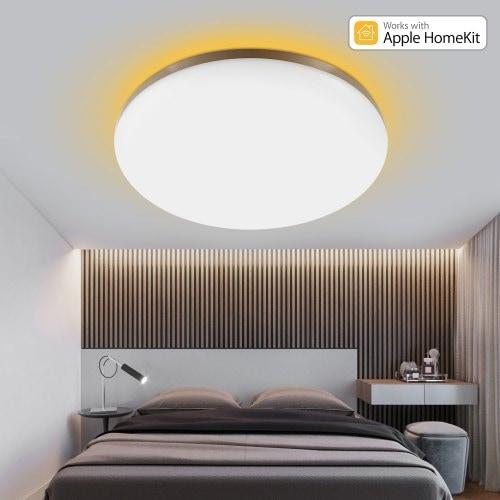 Surrounding Ambient Lighting LED Ceiling Light 2019