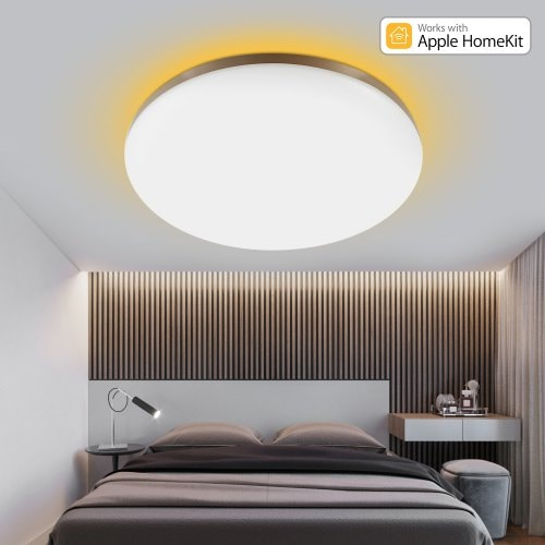 Surrounding Ambient Lighting LED Ceiling Light 2019