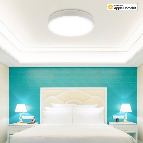 Xiaomi Smart LED Ceiling Light Latest 2019 Version YLXD41YL