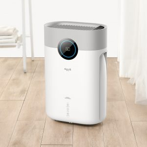 Deerma DT16C Air Dehumidifier